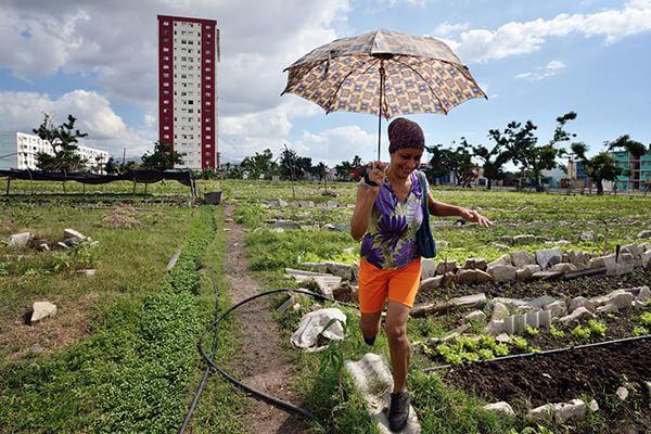 Cuba, Santiago de Cuba - Cultivated cities in Cuba